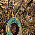 Tire Swing by Tony Grider