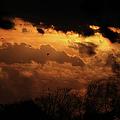 Tn Sunset Nov-11 by Ericamaxine Price