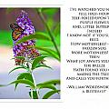 To A Butterfly--ww by Traci Cottingham