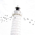 To The Lighthouse by Joel Witmeyer