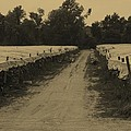 Tobacco Road by Mike Martin