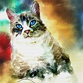 Toby The Cat by Robert Smith