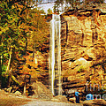Toccoa Falls by Darren Fisher