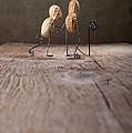 Together 03 by Nailia Schwarz