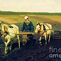 Tolstoy In The Ploughland by Pg Reproductions
