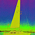 Tom Ray's Sailboat by First Star Art