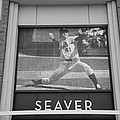 Tom Seaver 41 In Black And White by Rob Hans