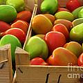 Tomatoes by Carlos Caetano