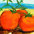 Tomatoes On The Beach by Les Leffingwell