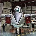 Tomcat by Tommy Anderson