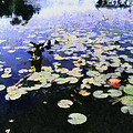 Torch River Water Lilies 3.0 by Michelle Calkins