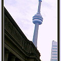 Toronto Cn Tower Canada by Danielle  Parent