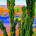 Totem Cactus by Randall Weidner