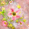 Touch Of Spring by Debbie Portwood