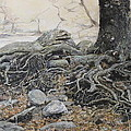 Tough Tree by Yuri Ozaki