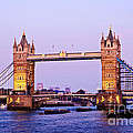 Tower Bridge In London At Dusk by Elena Elisseeva