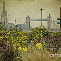 Tower Bridge In Springtime. by Clare Bambers