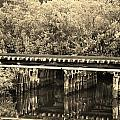 Track On The River In Sepia by Rob Hans