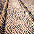 Tracks In The Sand by Adrian Evans
