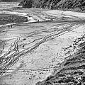 Tracks by John Monteath
