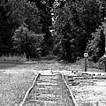 Abandoned Rails by John Black