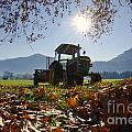 Tractor In Backlight by Mats Silvan