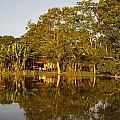 Traditional Amazon Village by Axiom Photographic