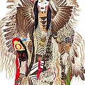 Traditional Pow-wow Dancer 1 by Tim McCarthy