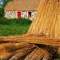 Traditional Thatching, Ireland by The Irish Image Collection