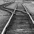 Train Tracks Switch by Darleen Stry