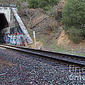 Train Tunnel At The Muir Trestle In Martinez California . 7d10228 by Wingsdomain Art and Photography