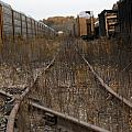 Trainyard In New Buffalo by Christopher Purcell