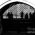 Traitors Gate And Ghostly Images  by David Pyatt