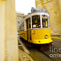 Tram by Andre Poling