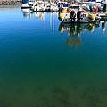 Tranquility At The Marina by Gaspar Avila