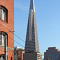 Transamerica Pyramid Tower In San Francisco . 7d7376 by Wingsdomain Art and Photography