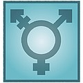 Transgender Symbol, Artwork by Stephen Wood