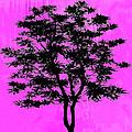 Tree by David G Paul
