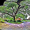 Tree In Church Yard - 4 by Larry Mulvehill
