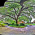Tree In Church Yard by Larry Mulvehill