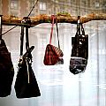 Tree Of Bags by Jez C Self