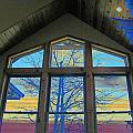 Tree Through The Window by Lenore Senior