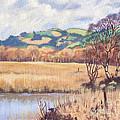 Cors Caron Nature Reserve Tregaron Painting by Edward McNaught-Davis