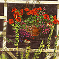 Trellis Flower Pot by David Lloyd Glover