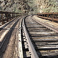 Trestle Tracks by Baywest Imaging