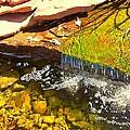 Trickle Waterfall by Usha Shantharam