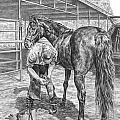 Trim And Fit - Farrier With Horse Art Print by Kelli Swan