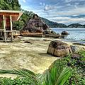 Tropical Beach by Adrian Evans