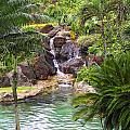 Tropical Garden Waterfall by Linda Phelps