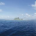 Tropical Island by Alexis Rosenfeld